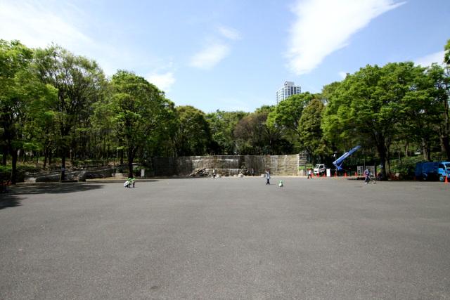 都庁の裏手に広がる新宿中央公園