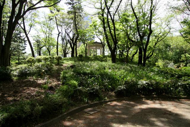 園内には富士見台と呼ばれる築山が存在するのだが――
