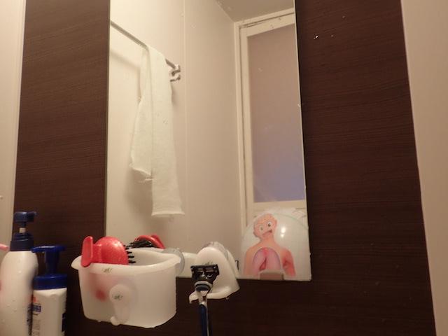 お風呂場の鏡に映っていても絵になる。