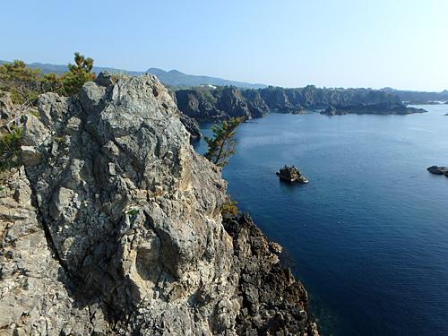このような岸壁に巣をつくるらしい。写真は佐渡島だけど。