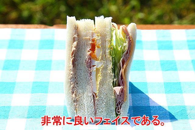 セブンイレブンのサンドイッチは、どれもフェイスが美しい。