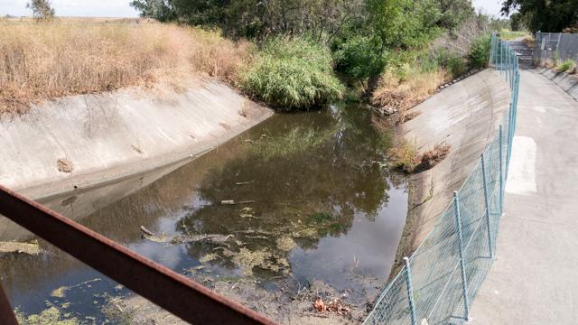 水量は増えたが先ほどのドブ川の延長、という感じはぬぐえない