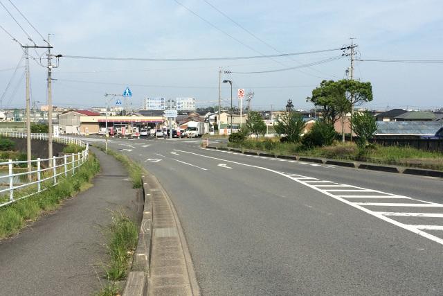道路の右手に草木が生い茂る一角が見えた