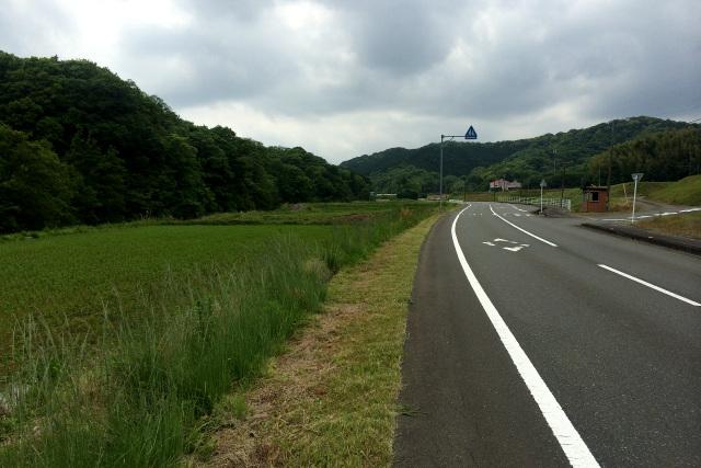 県道16号線の風景。もう少し開けていたような気もするが……記憶は曖昧だ