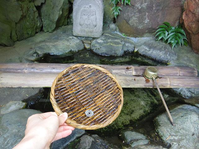 水の流れはほとんど無く、これからの季節蚊が多いかもしれない