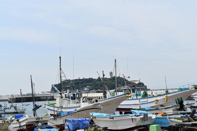 朝市が行われる腰越漁港