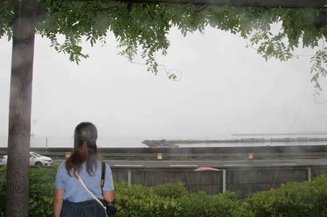 少し高台になっている公園に着いた。雨で見えづらいけど、道路挟んで向こう側が駿河湾だ