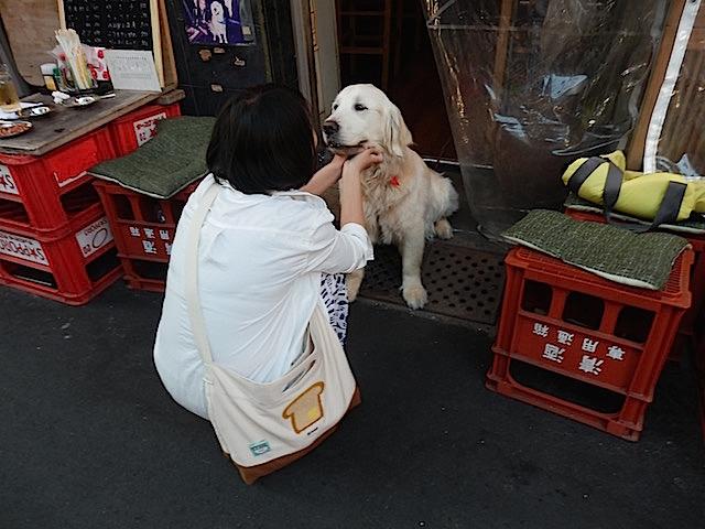近くで飲んでいた犬好きの女性が触りに来た