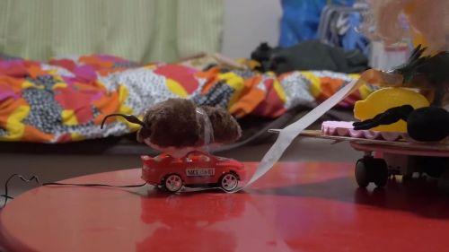 車のおもちゃで試したところ、見事に絡め取った!。