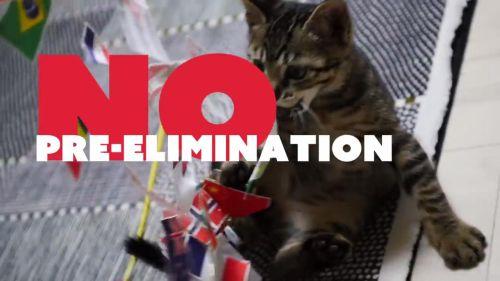 予選はありません。背景の猫は最初アテで入れていたのが、なし崩し的にそのまま採用になった。どこの猫かは不明(たぶんフリー素材)