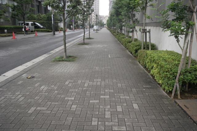 歩道に見える部分はぜんぶ空地です