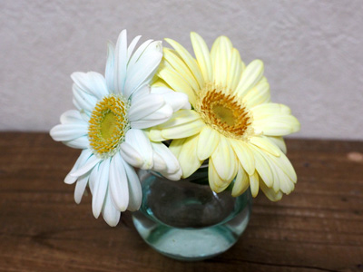 ブルーレットで染まった花とカレーな花。完全にオンリーワン