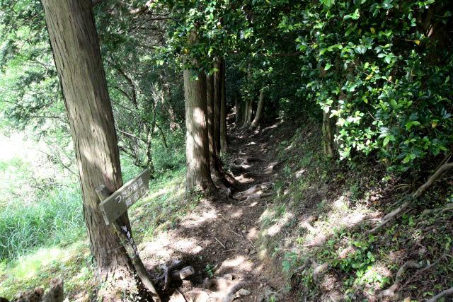 現在は歩く人も少ないこの峠道、特に誰とも会うことなく下る