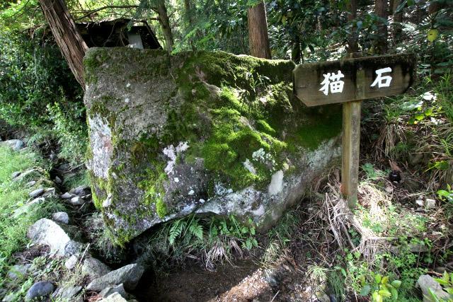 路肩に「猫石」なる岩があった