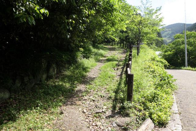 「蔦の細道」に代わって開拓された、近世の東海道である