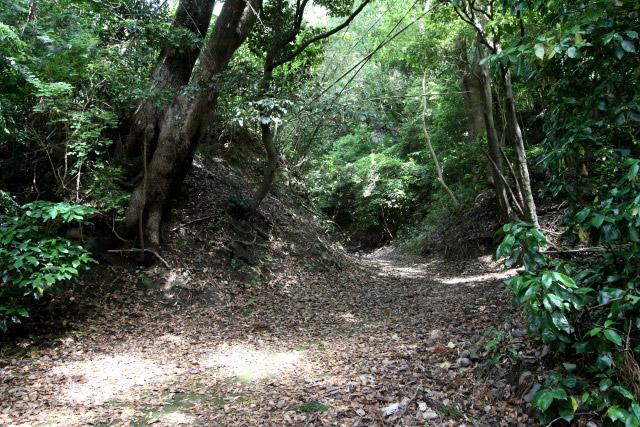 斜面の急な箇所は掘削され切通しとなっていた