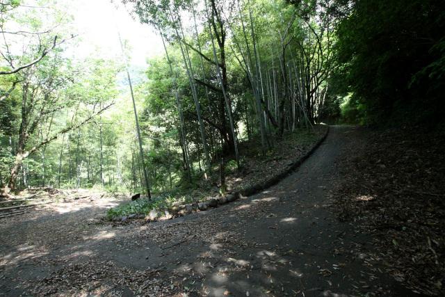 さらに進んでいくと、アスファルト舗装の道路と合流した
