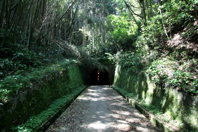 緑が生い茂る山の中、ぽっかりと口を開けた明治トンネル