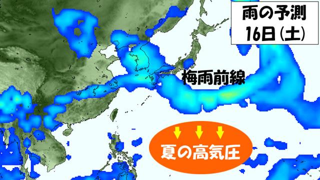 今週は、梅雨前線が九州~本州あたりに。夏の高気圧は南へ退き、梅雨明けの気配ナシ。
