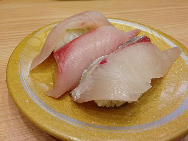 名古屋近海で採れた新瑞三点盛り。ぶり、かんぱち、しまあじ。