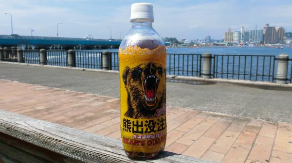 北海道と言えばガラナ。似ているような味を書こうとしたがないんじゃないか。ガラナ味。