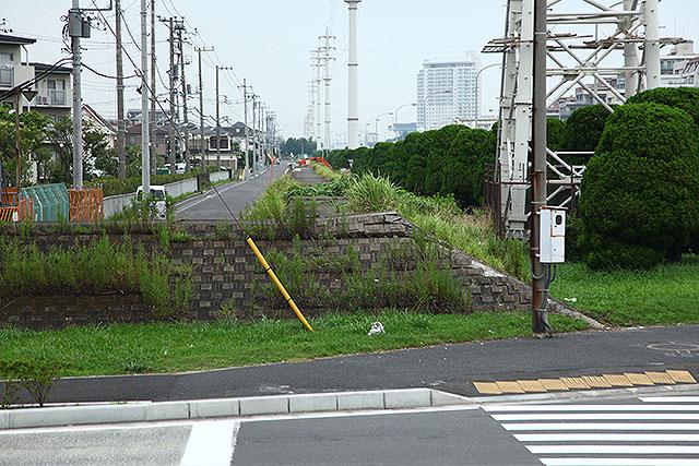 一度に全部埋めたてられたわけではないので、街の真ん中に堤防がある。東日本大震災の影響か、少し崩れていた。