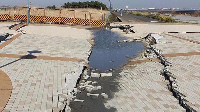 海っぺりの公園も結構な被害だった。