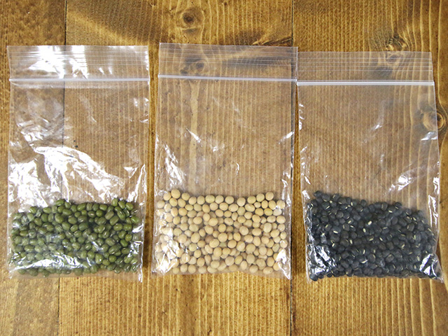 これがもやしの原料豆。左から緑豆・大豆・黒豆(ブラックマッペ)。