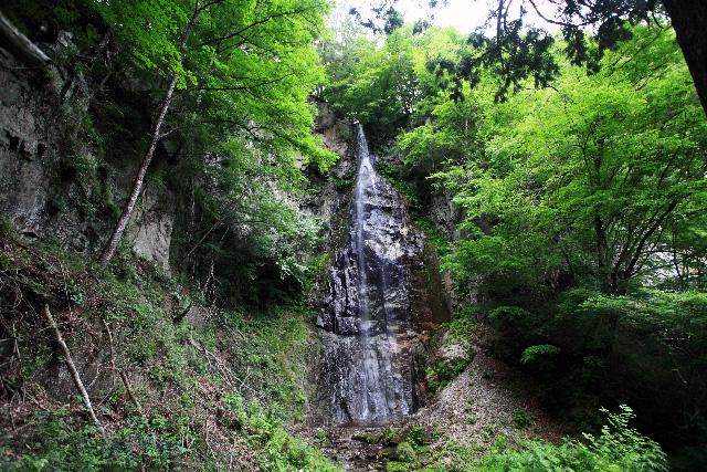 不動尊の裏手にあった滝