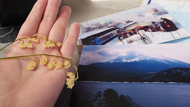 カラーチャートの分厚い本を眺めているのを見て、店主が「旅の思い出に」とスズランの押し花をくれた。あと冬の釧路の絵葉書も。無量寿蕎麦を食べたあとだけに、感無量!