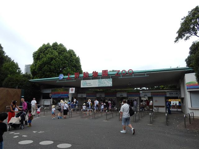 上野動物園に来た。