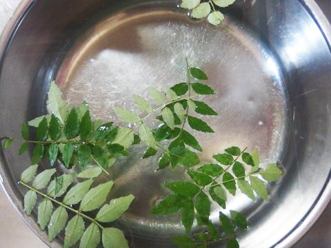 なんとかホンモノを装うため、庭(実家)で採れた山椒の葉をアクセントに。