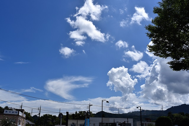 当日は夏休みらしい青空が広がっていた
