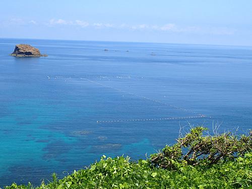 小型定置網の観察もできるぞ。南国のようなブルーの海だが、緯度は仙台くらい。