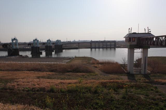 左が秋ヶ瀬取水堰、奥の水門から浄水場に送られる