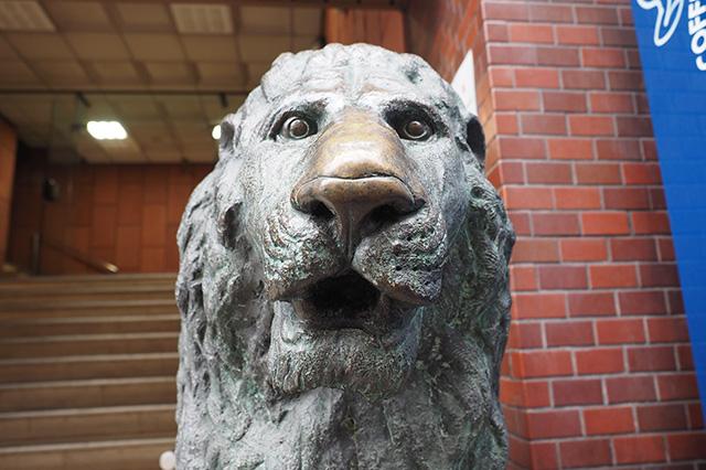 草刈正雄ばりに彫りが深い! そしてよく触られているのか、鼻が金色に光っている。