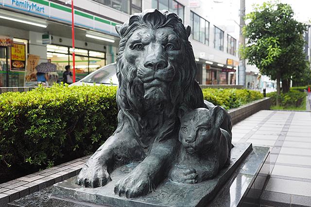 寛容的で、懐の広さを感じる親ライオン。