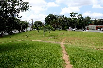 小さな芝生地帯。