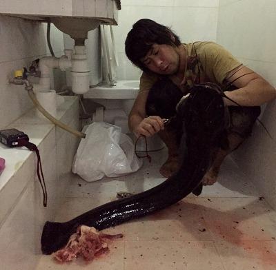 ホテルの清掃員にチップ(なぜか香港で人気を博している「出前一丁」を大量に)を渡し、浴室でクラリアスを解体させてもらう。なお、汚れや臭いが残らないよう念入りに掃除したところ、明らかに入室時よりも綺麗になってしまった。清掃員、普段の仕事サボりすぎだろ。