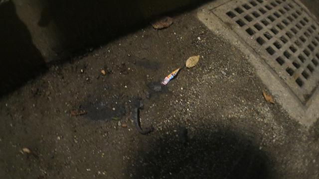 見下ろした火花の残骸。これがaikoの見た花火だというのか