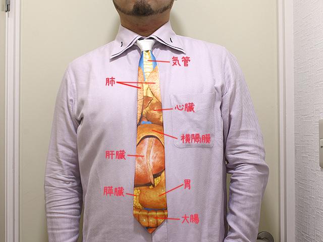 """人間の透視図。今後は""""きだてぶくろ""""とかそういう怪獣っぽい臓器も入れたい。"""