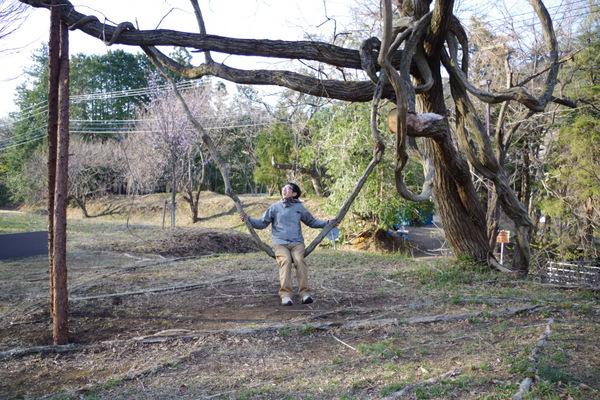 天然の木で作られたブランコがかっこいい