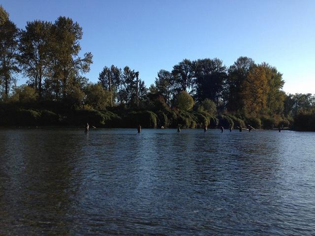 等間隔に並ぶ釣り人たち。良いポイントほど、その間隔は狭くなる。