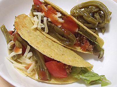 サボテンをトマトやチーズやハラペーニョと共にタコスに入れて食べてもみました。メキシコの味がする。うまい。大体食べてしまったのでもう1缶買おうかな。