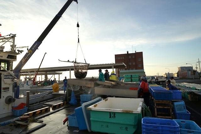 クレーンで魚倉から取り出し、レーンに乗せる。
