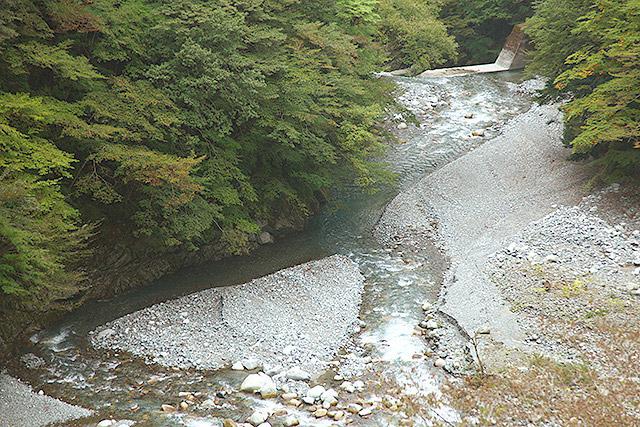 こういう中州は増水したら簡単に水の底に沈む。草が生えてないところは普段から水が流れやすいということだ。