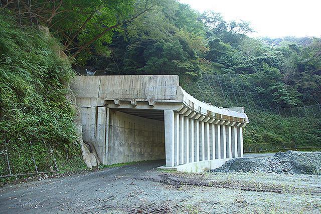 特に危険な場所はこういうトンネル(?)がある。