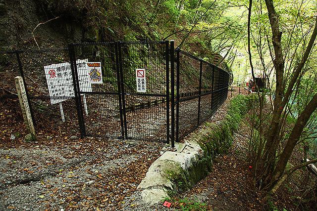 ゲートがありダムには近づけない。
