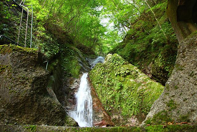 林道の両脇にも小さな沢や滝があり、飽きない。