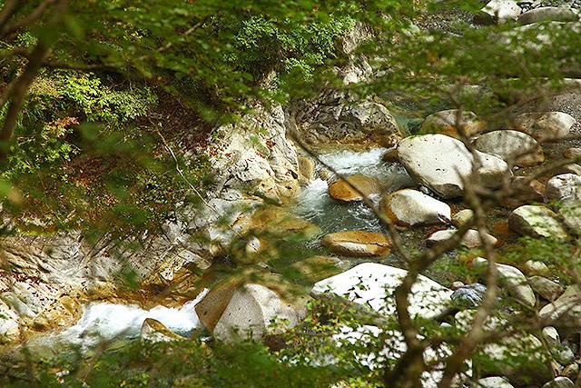 林道の下を流れる玄倉川の流れを見下ろすのも楽しい。